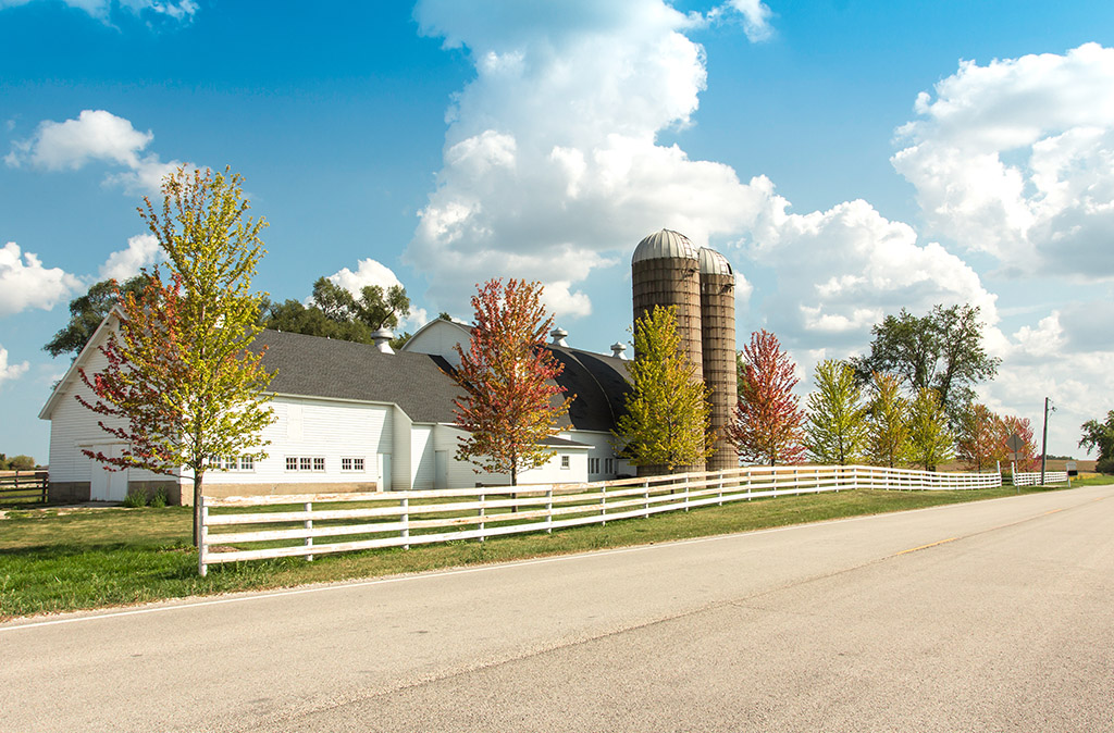Farm Insurance in Delhi, NY